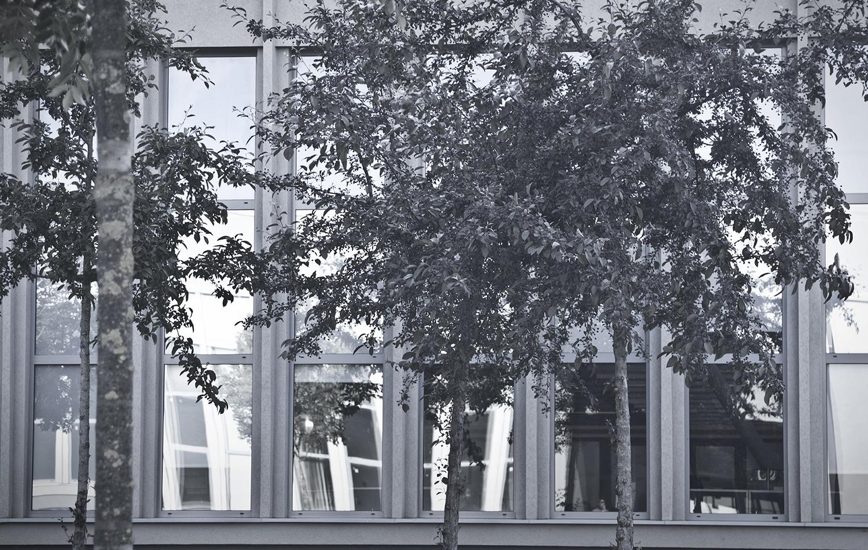 T 39 – Dart Architects